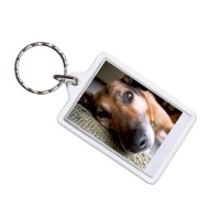 Key Chain Picture Frame